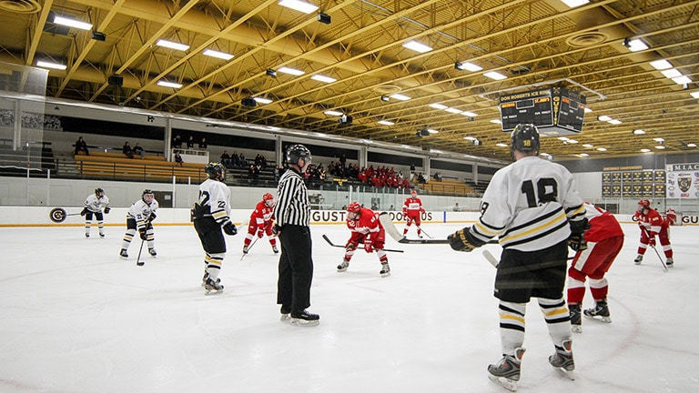 IntelligentDC Gives Gustavus Adolphus College Arena a Sonic Advantage