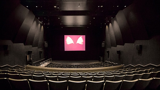 Meyer Sound Systems Enhance the Fine Arts at BAMPFA